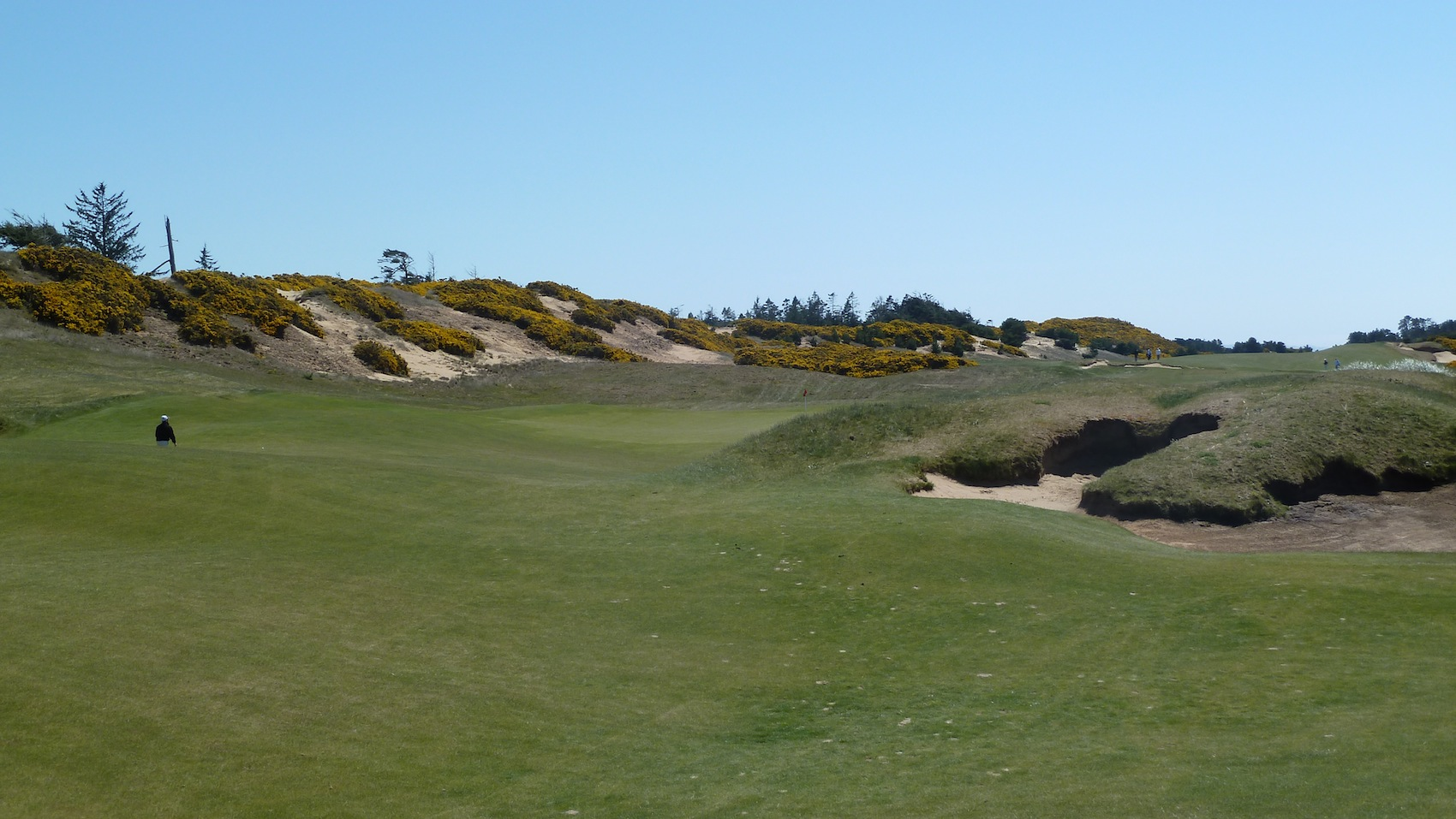 Bandon Dunes Golf Resort - Old Macdonald
