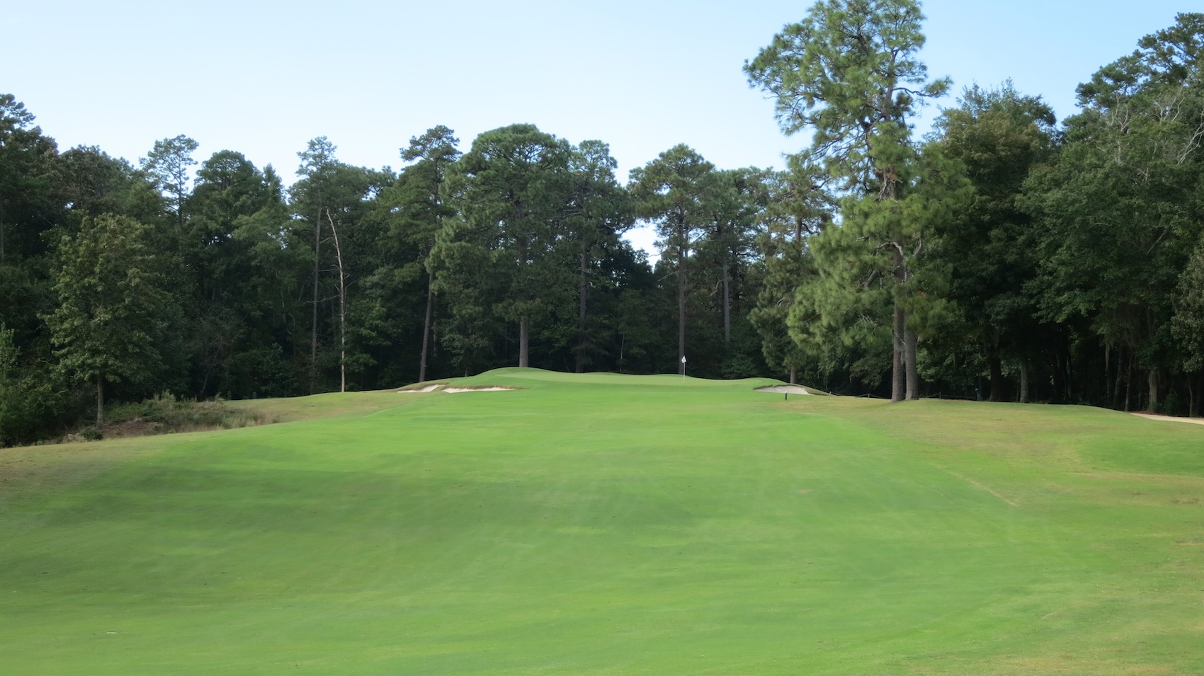 Palmetto Golf Club